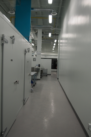 Hallway with the walk-in cooler doors on the left