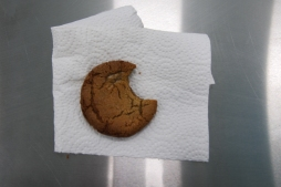 a yummy Ginger snap cookie