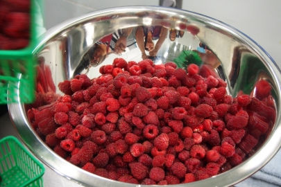 Students and raspberries